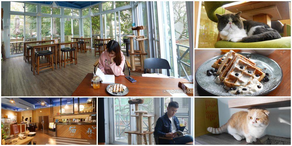 桃園餐廳。貓森nekomoricafe│桃園寵物友善餐廳,與人氣貓咪共度悠閒的桃園下午茶
