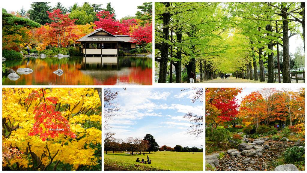 【日本※景點】國營昭和紀念公園  讓時間停留在夢境裡